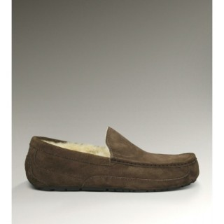Ugg Ascot-Suede 5775 Chaussons Chocolat Usa
