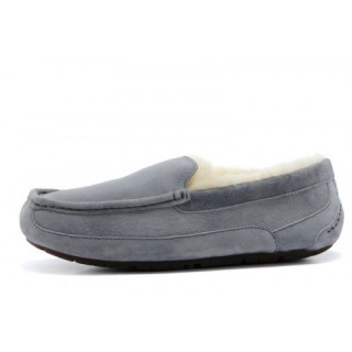 Ugg Ascot-Suede 5775 Chaussons Gris