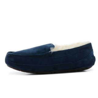 Ugg Ascot-Suede 5775 Chaussons Navy Offres