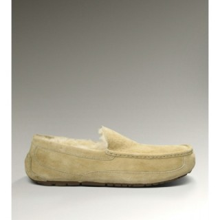 Ugg Boutique Ascot-Suede 5775 Chaussons Sable