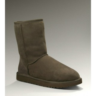 Ugg Femme Magasin Classic Short 5825 Chocolate