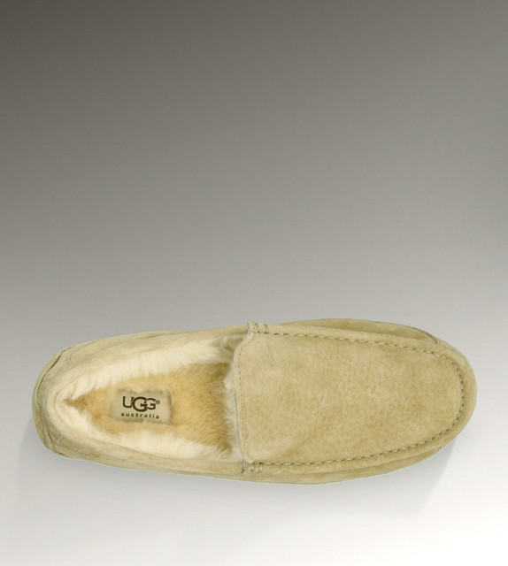 UGG Ascot-Suede 5775 chaussons sable